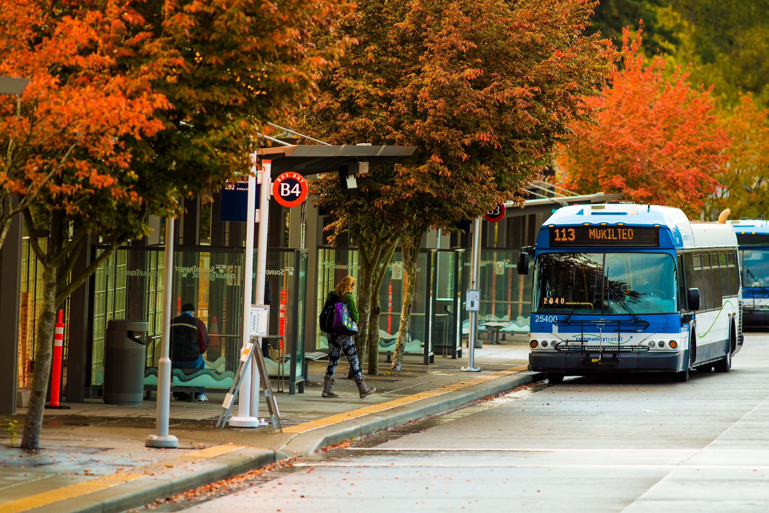 Community Transit bus with autumn leaves in the background